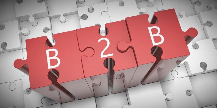b2b1.jpg